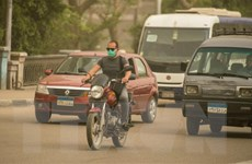 Cộng đồng người Việt tại Ai Cập đoàn kết vượt qua đại dịch COVID-19