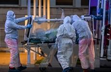 Số bệnh nhân mắc COVID-19 trên thế giới vượt mốc 1,8 triệu người
