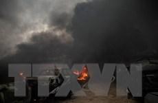 Dịch COVID-19 xuất hiện ở Libya, LHQ kêu gọi chấm dứt thù địch