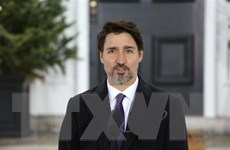 Canada thảo luận phương án từng bước mở cửa trở lại hoạt động kinh tế