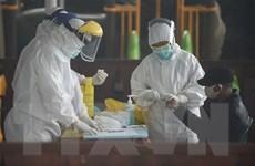 Indonesia có số ca nhiễm SARS-CoV-2 nhiều nhất Đông Nam Á