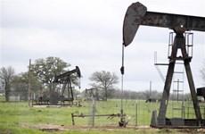 Nga: Thỏa thuận OPEC+ là nguyên nhân khiến giá dầu sụt thê thảm