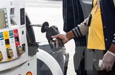 Nguy cơ phá sản hàng loạt do giá dầu 'lao đốc không phanh'
