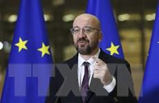 EU giới hạn nội dung hội nghị thượng đỉnh trực tuyến về COVID-19