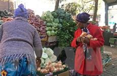 COVID-19 tiềm ẩn nguy cơ gây ra nạn đói cho người nghèo