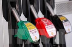 Giá dầu trên thị trường châu Á tăng trong phiên chiều 30/4