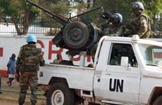 25 người thiệt mạng trong các vụ đụng độ ở Cộng hòa Trung Phi