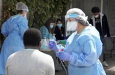 Đột phá: Israel phân lập thành công kháng thể virus SARS-CoV-2