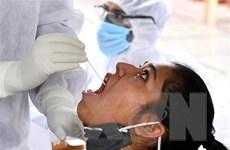 Ấn Độ thử nghiệm các loại thuốc y học cổ truyền để chống COVID-19