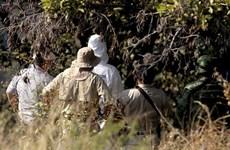 Phát hiện ngôi mộ tập thể có ít nhất 25 bộ hài cốt ở Mexico