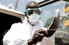 Dịch COVID-19 ở châu Phi: Lesotho ghi nhận ca nhiễm đầu tiên