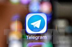Ứng dụng Telegram tuyên bố chấm dứt dự án tiền điện tử