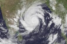 Siêu bão Amphan sắp đổ bộ, Ấn Độ và Bangladesh sơ tán hàng triệu dân