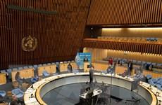 Các nước nhất trí mở cuộc điều tra về hoạt động ứng phó dịch của WHO