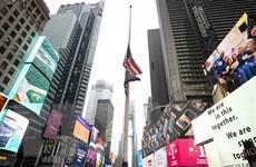 Dịch COVID-19 ngày 22/5: Mỹ tiếp tục là tâm dịch của thế giới