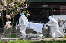 Dịch bệnh COVID-19 ngày 25/5: Số ca tử vong tại Mỹ lên tới gần 100.000