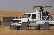 Việt Nam ủng hộ bảo đảm công lý trong quá trình chuyển tiếp ở Sudan