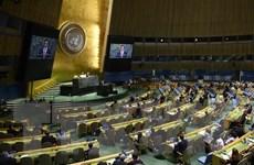 Bầu mới 5 nước Ủy viên không thường trực Hội đồng Bảo an