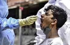 Ấn Độ: Tỷ lệ xét nghiệm dương tính với virus SARS-CoV-2 tăng mạnh
