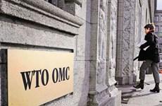 Cuộc đua lựa chọn ứng cử viên cho vị trí Tổng Giám đốc WTO