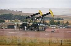 Giá dầu biến động ngược chiều tại thị trường châu Á phiên 24/6
