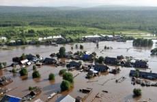 Lũ lụt nghiêm trọng nhất trong một thập kỷ qua tại Ukraine