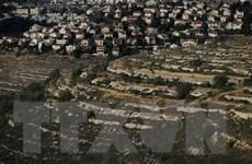 Ngoại trưởng Israel: Sáp nhập Bờ Tây không nằm ở chương trình nghị sự