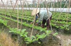 Hà Nội huy động hơn 11.790 tỷ đồng xây dựng nông thôn mới