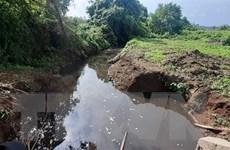 Người dân bức xúc vì trang trại lợn xả thải trực tiếp ra môi trường