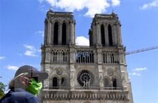 Đa số người dân Pháp ủng hộ phục dựng ngọn tháp của Nhà thờ Đức Bà