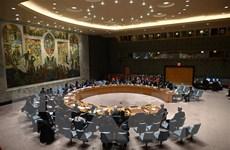 Hội đồng Bảo an Liên hợp quốc vẫn chia rẽ sâu sắc về vấn đề Syria