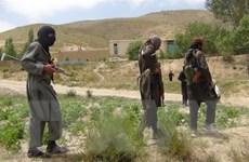 Lệnh ngừng bắn kéo dài 3 ngày ở Afghanistan bắt đầu có hiệu lực