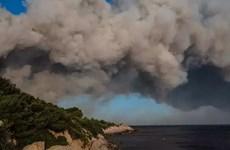 Cháy rừng tại Pháp khiến 22 người bị thương và hàng nghìn người sơ tán