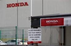 Honda dự báo lợi nhuận cả năm nay sẽ giảm mạnh do dịch COVID-19