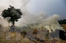 Nâng mức đóng góp của Việt Nam ứng phó với biến đổi khí hậu toàn cầu