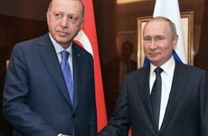 Tổng thống Nga, Thổ Nhĩ Kỳ thảo luận xung đột tại Libya và Syria