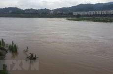 Xuất hiện lũ lớn trên sông Hồng và sông Chảy đoạn qua tỉnh Lào Cai