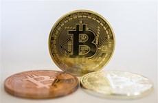 Giá đồng bitcoin tăng gấp 3 lần kể từ tháng Ba vừa qua