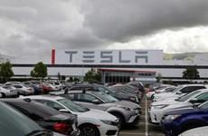 Cổ phiếu Tesla vượt mốc 2.000 USD trước thềm đợt phân tách