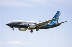Châu Âu cho phép tiến hành thử nghiệm máy bay Boeing 737 MAX
