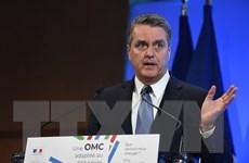 Môi trường thương mại quốc tế đang xấu đi, WTO liệu có thể hồi sinh?