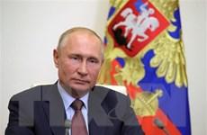 Ông Putin hủy cuộc đối thoại thường niên với người dân trong năm 2020