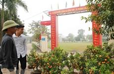 Người dân Đồng Tâm đang chung sức, nỗ lực xây dựng nông thôn mới