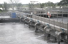 Sóc Trăng: Khu Công nghiệp An Nghiệp gây ô nhiễm môi trường