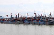 Quảng Nam: Các tàu cá di chuyển ra khỏi vùng ảnh hưởng của bão số 5
