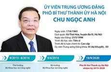 [Infographics] Chân dung Phó Bí thư Thành ủy Hà Nội Chu Ngọc Anh