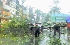 Thành phố Hồ Chí Minh: Cây bật gốc do mưa lớn, đè trúng người đi đường