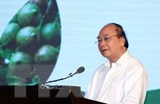 Thủ tướng Nguyễn Xuân Phúc: Cây macca 'đi sau nhưng phải về trước'