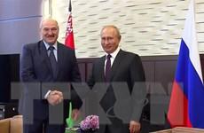 Phản ứng của Belarus và Nga sau khi EU ban bố lệnh trừng phạt Minsk