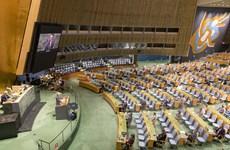 Liên hợp quốc và sứ mệnh định hình một tương lai bền vững